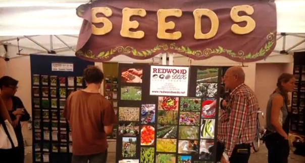 Redwood Seeds at Heirloom Expo
