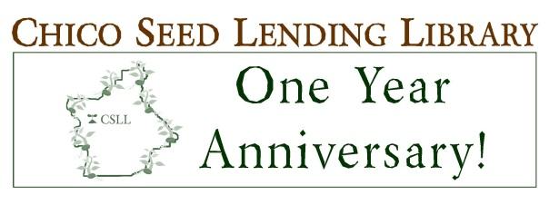 1 year banner